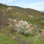 село Битово