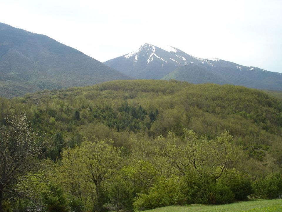 Глетка од врвот Бел Камен на Даутица во Порече