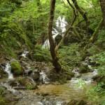 Колешински водопади